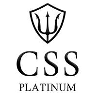 CSS Platinum Ltd